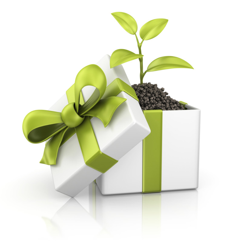 eco-friendly-gift