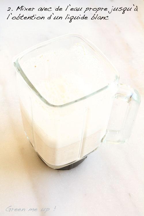lait végétal fait maison
