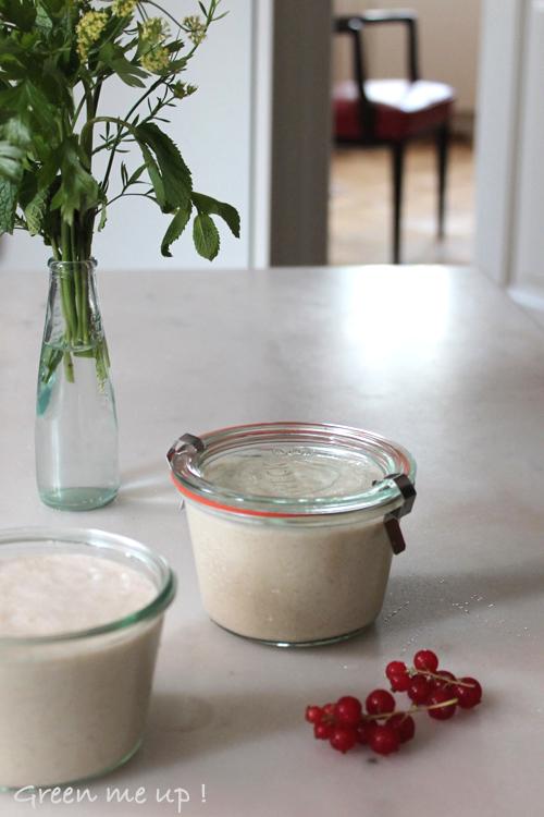 yaourt avoine fermentée vegan sans lait
